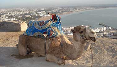6 Days Agadir to Marrakech